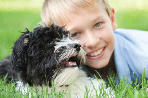 Boy and dog from Crescent vets in Tewkesbury